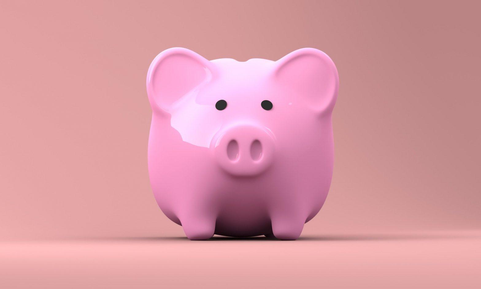 świnka, skarbonka, różowa świnia, oszczędności